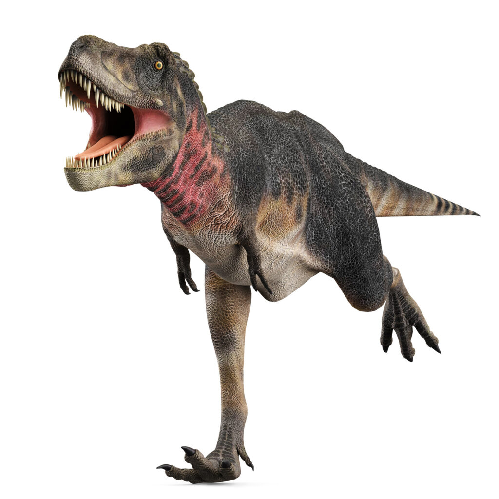 Executives Job Seekers – Are you a Dinosaur?